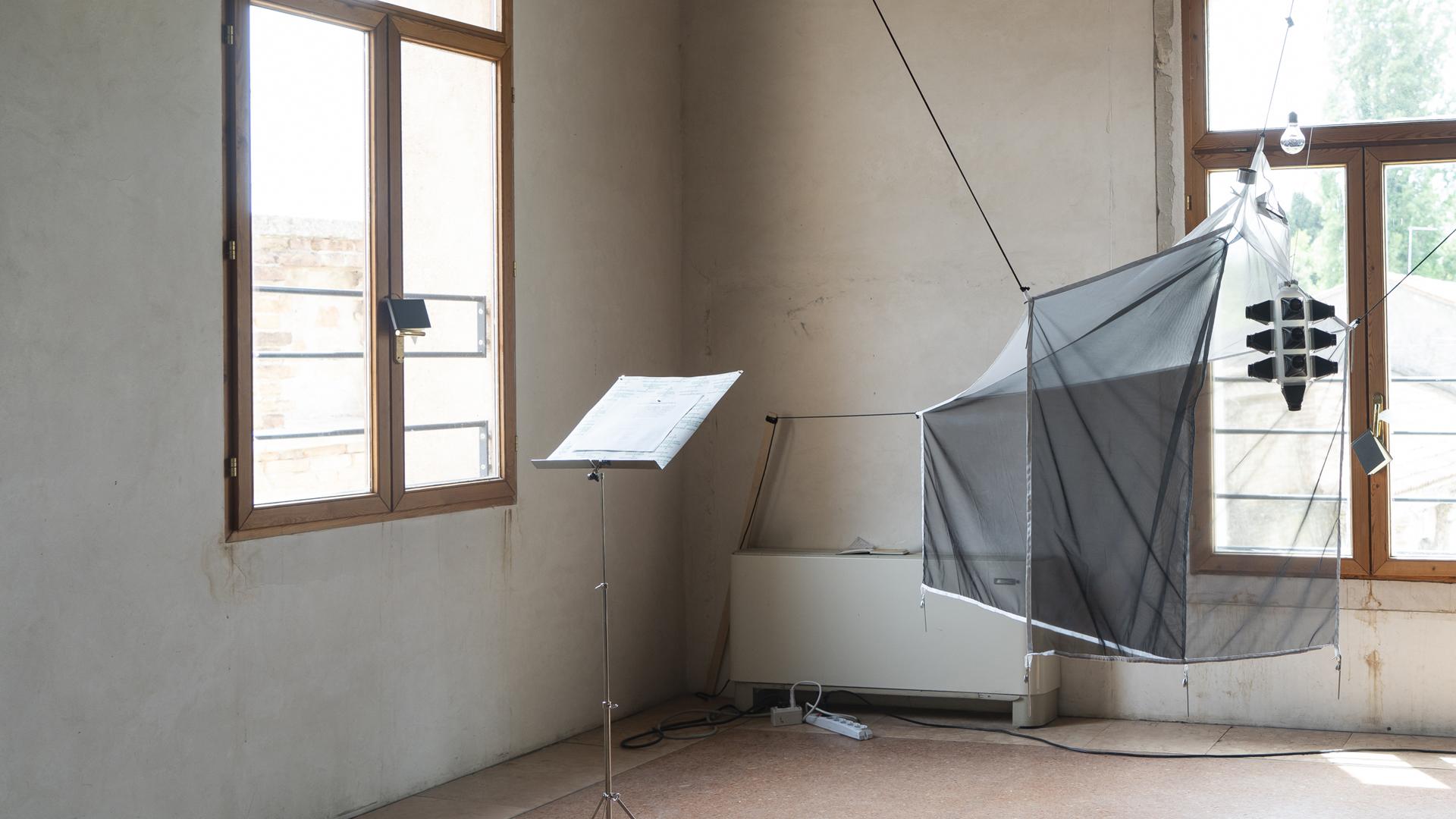 Hyönteisloukku-taideteos huoneessa