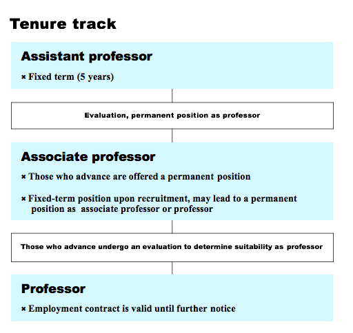 Assistant professor: fixed term (5 years). Moving to evaluation, permanent position as professor.  Associate professor:  Those who advance are offered a permanent position or fixed-term position upon recruitment, may lead to a permanent position as associate professor or professor. Those who advance undergo an evaluation to determine suitability as professor Professor: employment contract is valid until further notice
