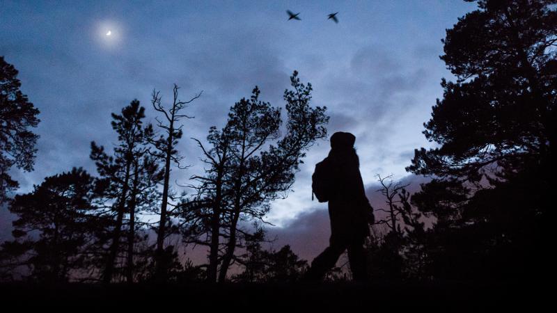 Tummanpuhuva henkilö iltahämärässä luonnon keskellä.
