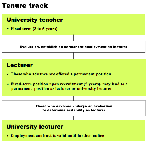 Tenure track University teacher: fixed term (3 to 5 years) moving to evaluation, establishing permanent employment as lecturer.  Lecturer: Those who advance are offered a permanent position or Fixed-term position upon recruitment (5 years), may lead to a permanent  position as lecturer or university lecturer.  Moving to those who advance undergo an evaluation to determine suitability as lecturer.  University lecturer: Employment contract is valid until further notice.