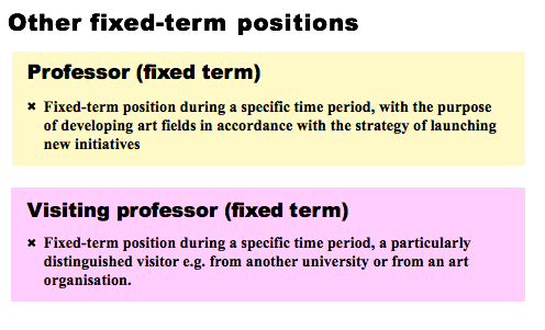 Other fixed-term positions: Professor: Fixed-term position during a specific time period, with the purpose of developing art fields in accordance with the strategy of launching new initiatives  Visiting professor (fixed term): Fixed-term position during a specific time period, a particularly; distinguished visitor e.g. from another university or from an organisation.