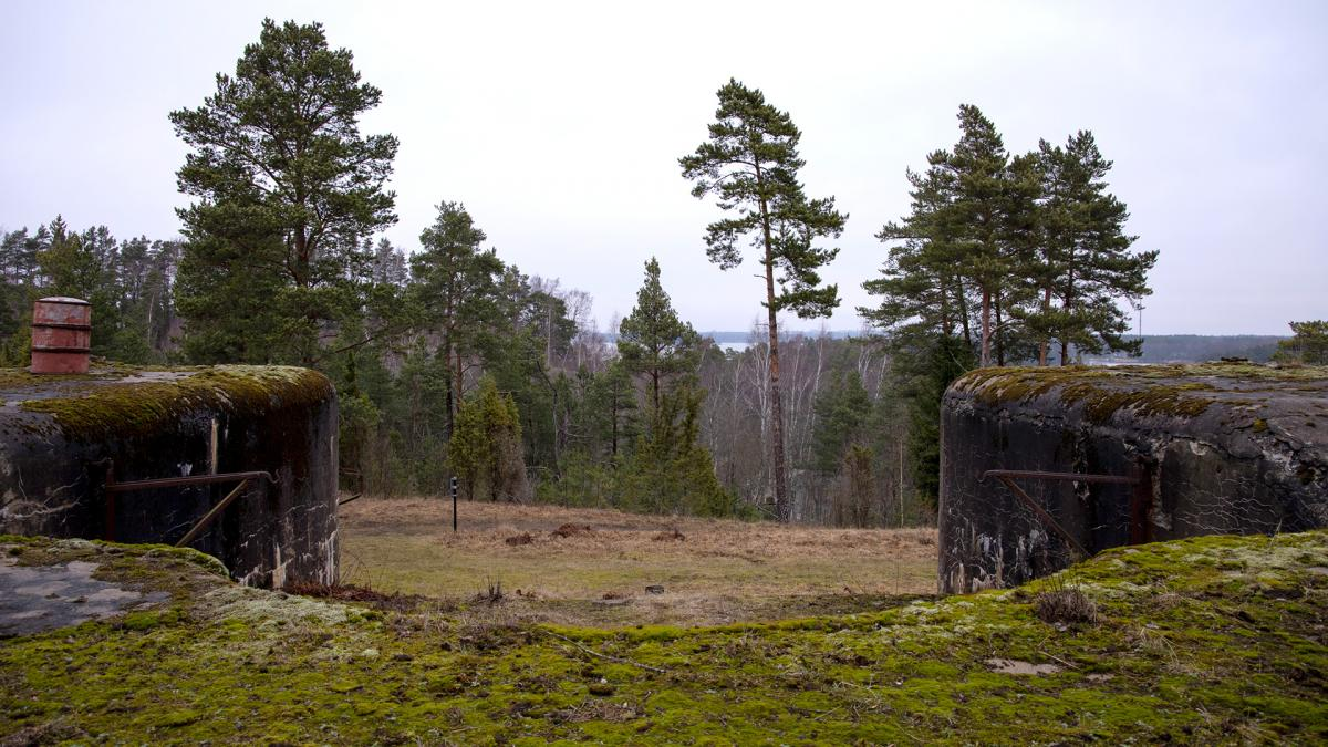 Kuninkaansaari nature landscape, two bunkers at the forefront, a speck of sea behind pine trees on the horizon.