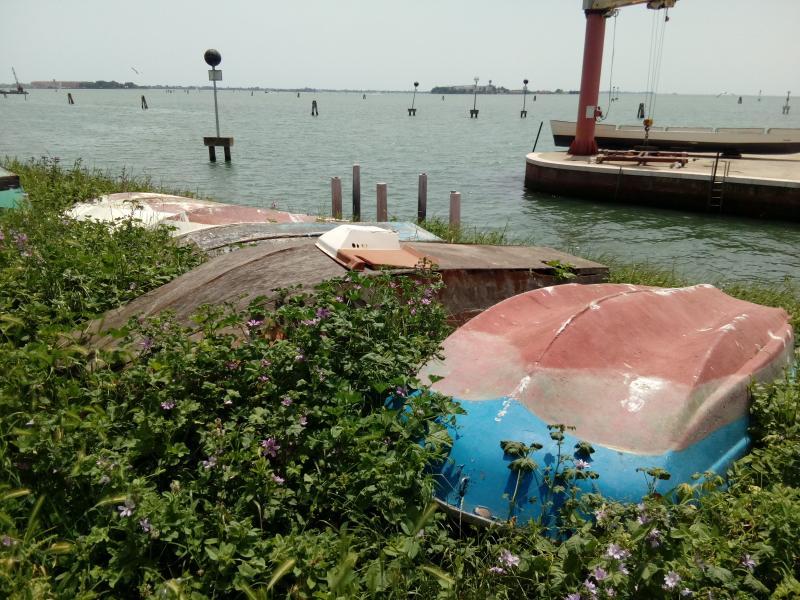 Vanhoja, ympärikäännettyjä veneitä joutomaalla satamamaisemassa rannalla.