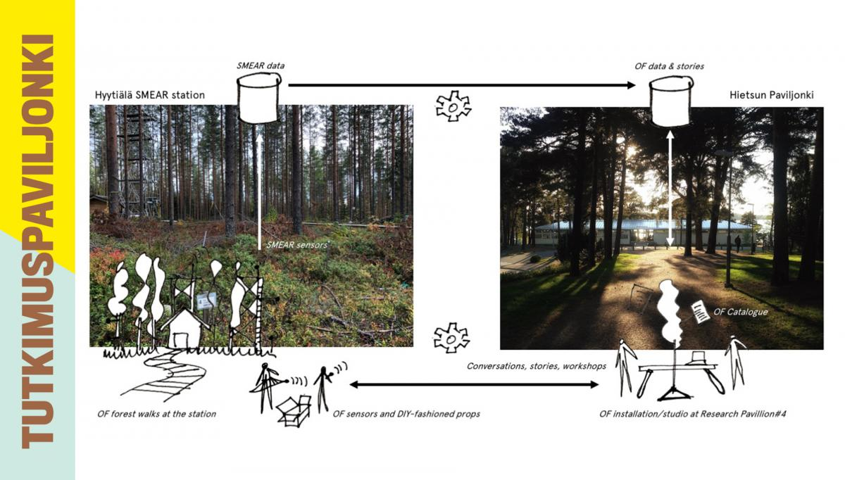 Sketch of the event Open Forest.